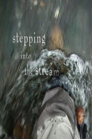 stepping-intro-the-stream