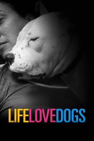 life_love_dogs
