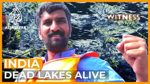dead-lakes-alive